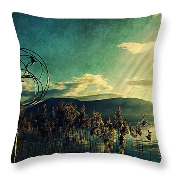 Throw Pillow featuring the photograph Never Forget The Beauty  by Barbara Orenya