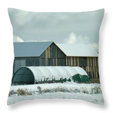 Throw Pillow featuring the photograph New And Old Barn Planks by Brenda Brown
