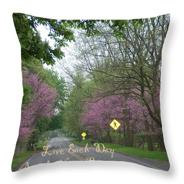 New Beginning Throw Pillow by Aimee L Maher Photography and Art Visit ALMGallerydotcom