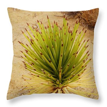 New Beginning   Throw Pillow by Angela J Wright