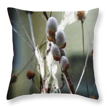 Throw Pillow featuring the photograph New Beginnings And Fairytales by Rebecca Sherman