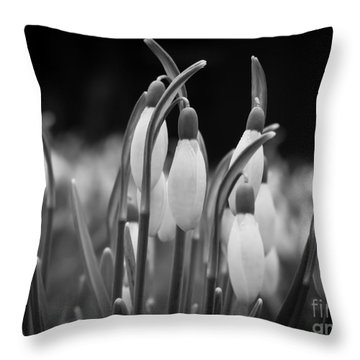 New Beginnings And Hope Throw Pillow by Inez Wijker Photography