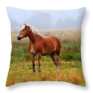 New Brunswick Horse Throw Pillow