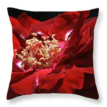 Throw Pillow featuring the photograph New Dream by Joy Watson
