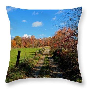 New England Farm Rota Springs Throw Pillow