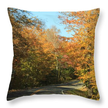 New England Road Throw Pillow