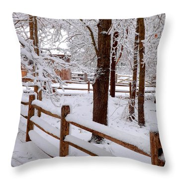 New England Winter Throw Pillow by Dianne Cowen