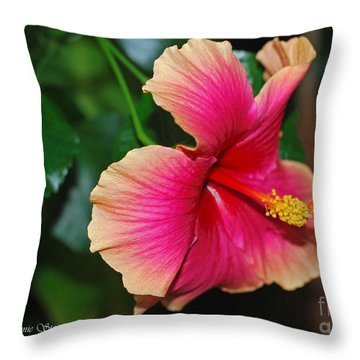 New Every Morning - Hibiscus Throw Pillow by Connie Fox