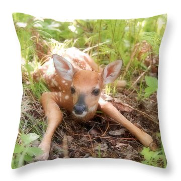 New Fawn In The Forest Throw Pillow