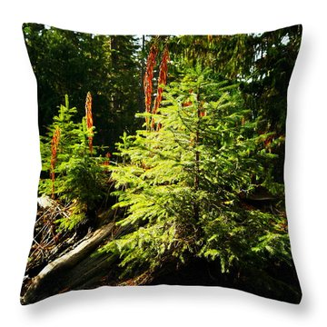 New Forest Throw Pillow by Jeff Swan