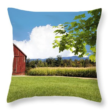 New Hampshire Barnyard Throw Pillow by Fred Larson