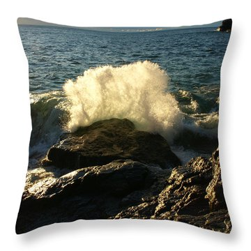 Throw Pillow featuring the photograph New Heights by James Peterson