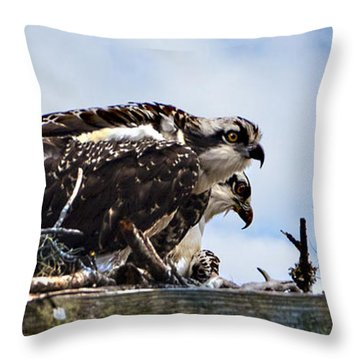 New Kids On The Marsh Throw Pillow