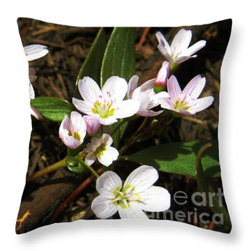 Tiny Works Of Art Throw Pillow