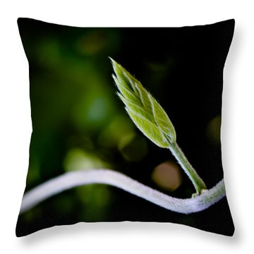 New Life Throw Pillow by Bob Orsillo
