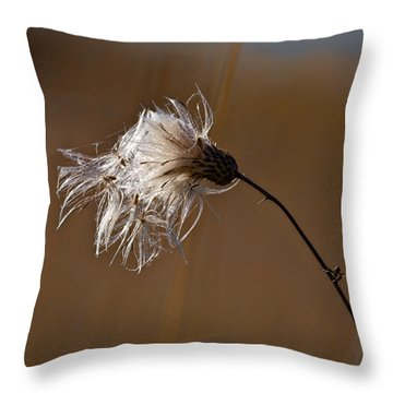 New Life Is Comming Throw Pillow