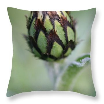 New Life Throw Pillow by Mark Severn