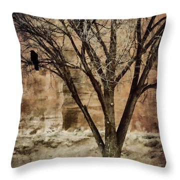 New Mexico Winter Throw Pillow