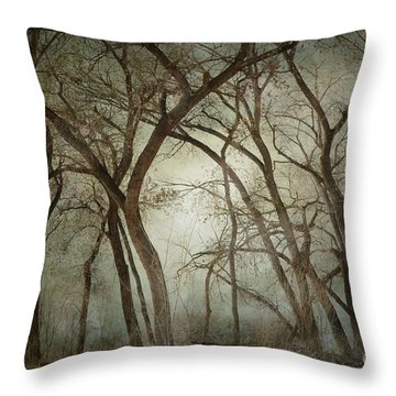 New Mexico Winter Woodland Throw Pillow by Andrea Hazel Ihlefeld