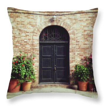 Throw Pillow featuring the photograph New Orleans Courtyard Door by Heather Green