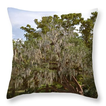 New Orleans Spanish Moss Throw Pillow by Christine Till
