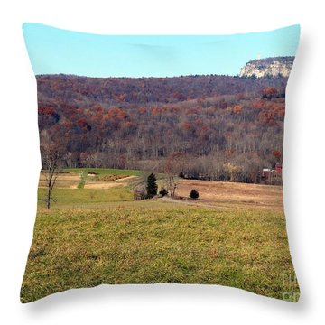 New Paltz Beauty Throw Pillow by Ed Weidman