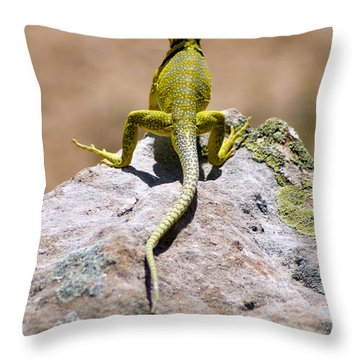 New Photographic Art Print For Sale Lizard Back Ghost Ranch New Mexico Throw Pillow