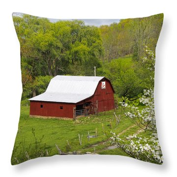 New Red Paint 2 Throw Pillow