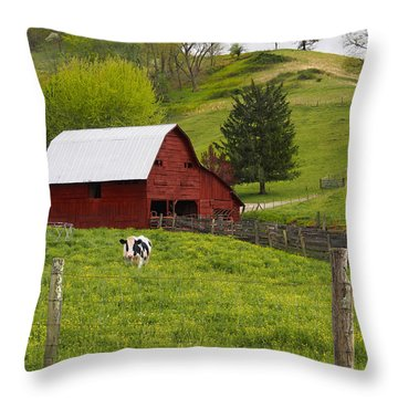 New Red Paint Throw Pillow by Mike McGlothlen