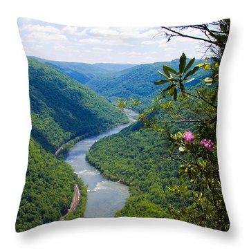 New River View Throw Pillow
