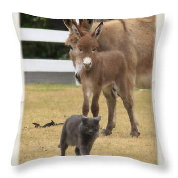 New Wonders Throw Pillow