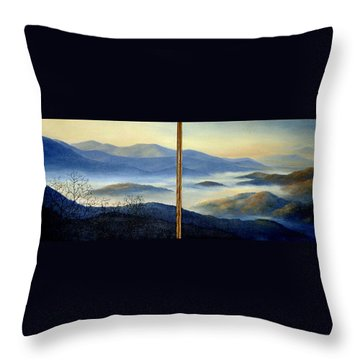 New World Throw Pillow by Mary Taglieri