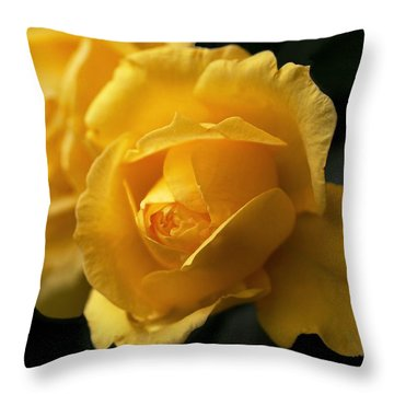 New Yellow Rose Throw Pillow by Rona Black