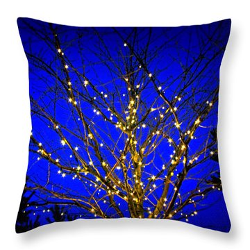 Throw Pillow featuring the photograph New York Botanical Garden Holiday Tree by Aurelio Zucco