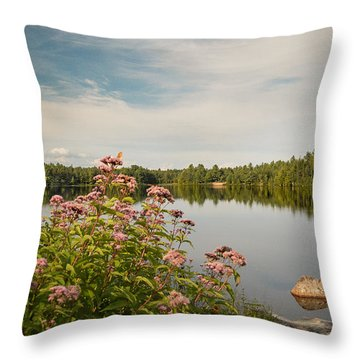 Throw Pillow featuring the photograph New York Lake by Debbie Green