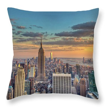 Skyscraper Throw Pillows For Sale