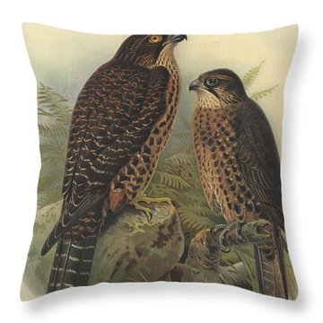 New Zealand Falcon Throw Pillow by Rob Dreyer