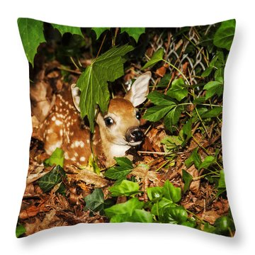 Throw Pillow featuring the photograph Newborn Fawn  by Eleanor Abramson