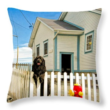 Newfoundland Dog In Newfoundland Throw Pillow