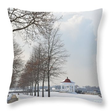 Newport Waterfront Throw Pillow