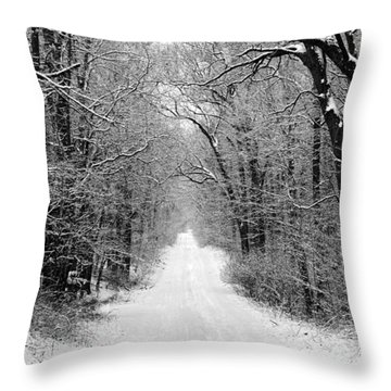 Next Stop In Winter Throw Pillow by John Crothers
