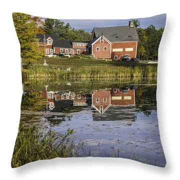 Throw Pillow featuring the photograph Nh Farm Reflection by Betty Denise