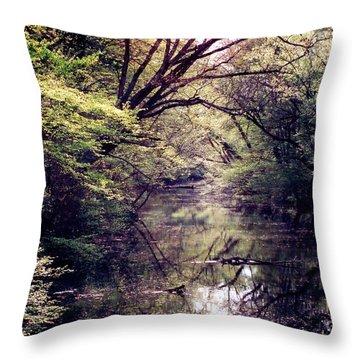 Ni River Throw Pillow by Anita Lewis