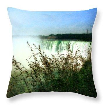 Niagara Falls With Grasses Throw Pillow