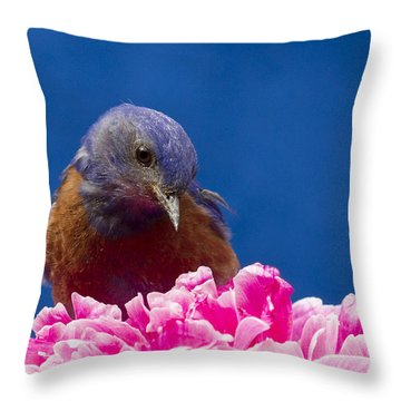 Nice Flower Throw Pillow by Jean Noren
