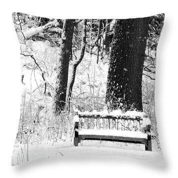 Nichols Arboretum Throw Pillow by Phil Perkins