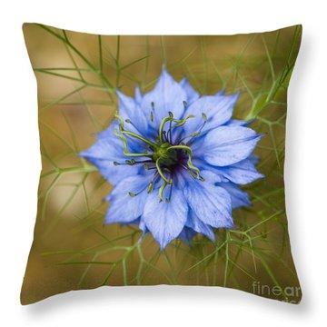Nigella Damascena Throw Pillow by Anne Gilbert