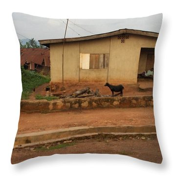 Nigerian House Throw Pillow by Amy Hosp
