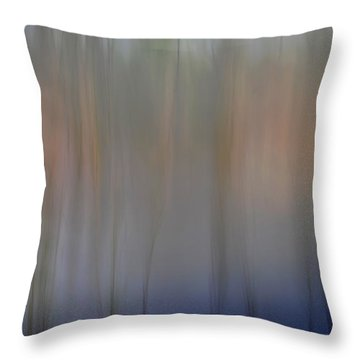 Night #8 Throw Pillow by Catherine Lau