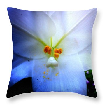 Night And Day Lilly  Throw Pillow